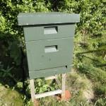 blog_Pre-Flipped-Hive-150x150